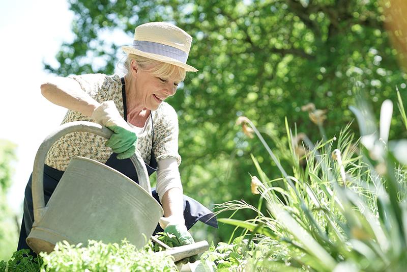 Glückliche Seniorin (Elfriede) mit Gießkanne bei der Gartenarbeit